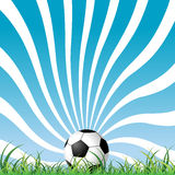 Soccer ball on the grass Stock Images