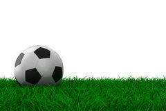 Soccer ball on grass. Isolated 3D image Stock Photos