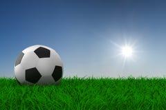 Soccer ball on grass. 3D image Stock Image