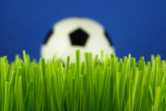 Soccer ball in grass Royalty Free Stock Images