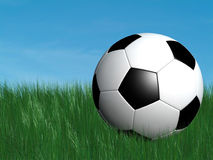 Soccer ball on grass. And blue sky on the background Royalty Free Stock Photography