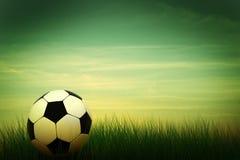 Soccer ball in grass Stock Image
