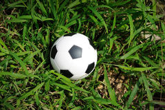 Soccer ball on the grass. Royalty Free Stock Images