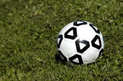 Soccer Ball in Grass Stock Images