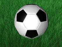 Soccer - Ball - Grass - 3D Royalty Free Stock Photography