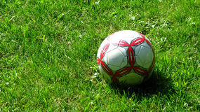Soccer ball on grass. Red and white soccer ball isolated on grass royalty free stock images