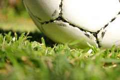 Soccer ball on grass Royalty Free Stock Photos