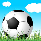 Soccer ball on the grass Royalty Free Stock Photos