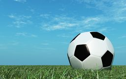 Soccer ball on the grass. 3r render of a soccer ball on the grass Royalty Free Stock Photo