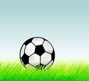 Soccer ball in grass. Vector illustration Royalty Free Stock Photo