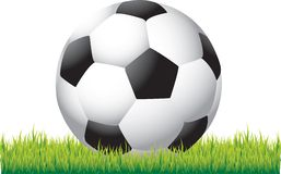 Soccer ball on grass. Close up picture of a soccer ball laying on grass Royalty Free Stock Image