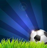 Soccer ball on grass background Stock Image