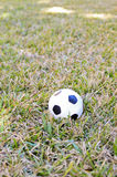 Soccer ball on the grass Royalty Free Stock Photo