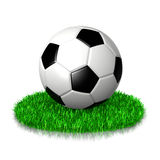 Soccer Ball on Grass. 3D Illustration on White Background Royalty Free Stock Images
