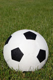 Soccer Ball in Grass Field Royalty Free Stock Photos