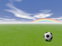 Soccer ball in a grass field Stock Photo