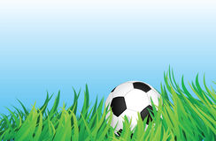 Soccer ball on grass field Royalty Free Stock Photos
