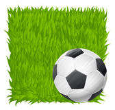 Soccer ball on grass field background. football theme Stock Photo