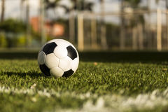 Soccer ball on a grass field. Royalty Free Stock Images