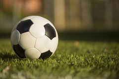 Soccer ball on a grass field. royalty free stock photo