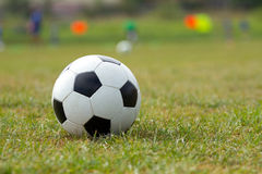 Soccer ball on the grass Stock Photography