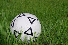 Soccer ball on the grass. The soccer ball in the green grass Stock Photography