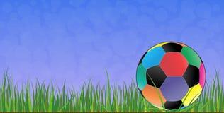 Soccer ball grass Stock Photos