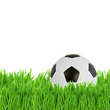 Soccer ball in grass Royalty Free Stock Photo