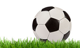 Soccer ball in the grass isolated on white background Stock Images