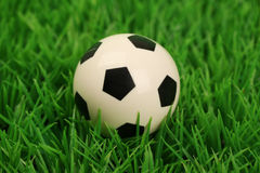 Soccer ball on a grass pitch Royalty Free Stock Image