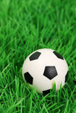 Soccer ball on a grass pitch Royalty Free Stock Photo