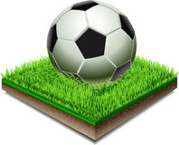 Soccer ball on the Grass Plate  On White Background Stock Photos