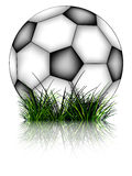 Soccer ball and grass reflected Royalty Free Stock Photos