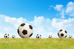 Soccer ball on grass sky background. Soccer ball on green grass sky background Royalty Free Stock Images