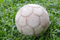 Soccer ball on grass sky background. Stock Photos