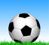Soccer ball on the grass. Vector football Royalty Free Stock Image