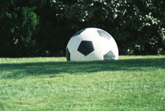 Soccer ball on grassy field Royalty Free Stock Photos