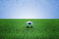 Soccer ball in a green field Royalty Free Stock Photos