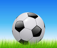 Soccer ball on green field. Soccer ball on green grass field, vector illustration Royalty Free Stock Photos