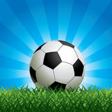 Soccer Ball on Green Grass stock illustration