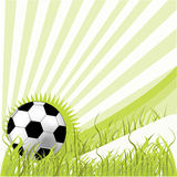 Soccer ball on green grass. Illustration Royalty Free Stock Image