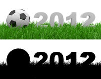Soccer ball on green grass. 2012 Stock Photos