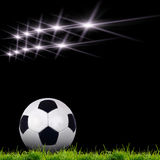 Soccer ball on the green grass Stock Photography