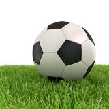 Soccer ball on green grass Stock Photography