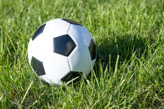 Soccer Ball. With green grass Royalty Free Stock Image