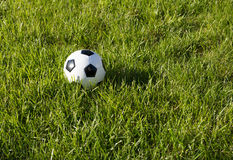 Soccer Ball. With green grass Royalty Free Stock Photo
