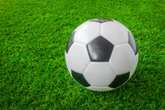 Soccer ball on green grass . Stock Photos