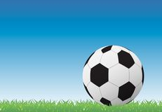 Soccer ball on green grass background Royalty Free Stock Images