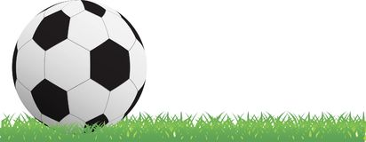 Soccer ball on green grass background Stock Images