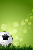 Soccer Ball on Green Grass Background Stock Photos